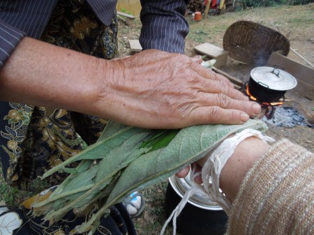 Healing hands applying the plant medicine
